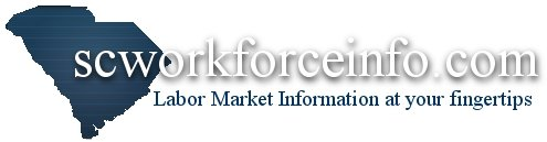 scworkforceinfor.com